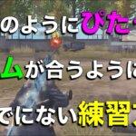 【荒野行動】猛者のピタッと合わせるエイム練習方法を紹介!【解説】