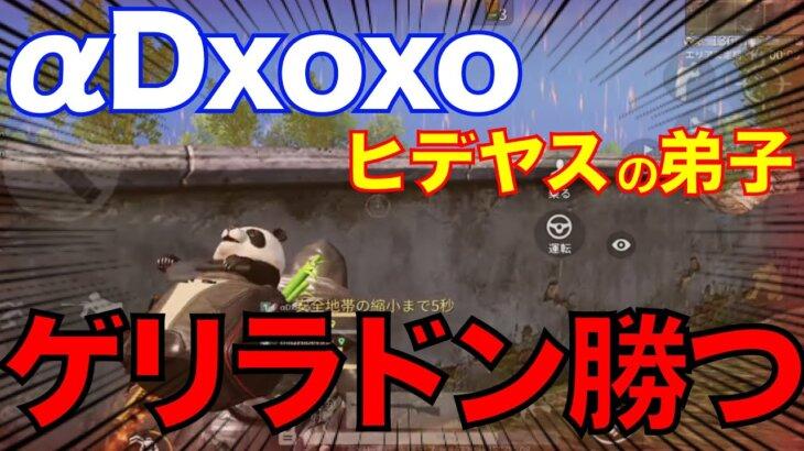 【荒野行動】最強銀コート軍団!αDxoxoとヒデヤスの弟子公開!生放送中にドン勝つ!!【ヒデヤス】